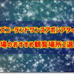 ディズニーランドワンスアポンアタイム穴場のおすすめ観覧場所2選!