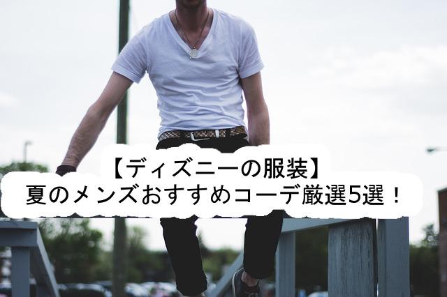 【ディズニーの服装】夏のメンズのおすすめコーデ厳選5選! , ディズニー裏マニア