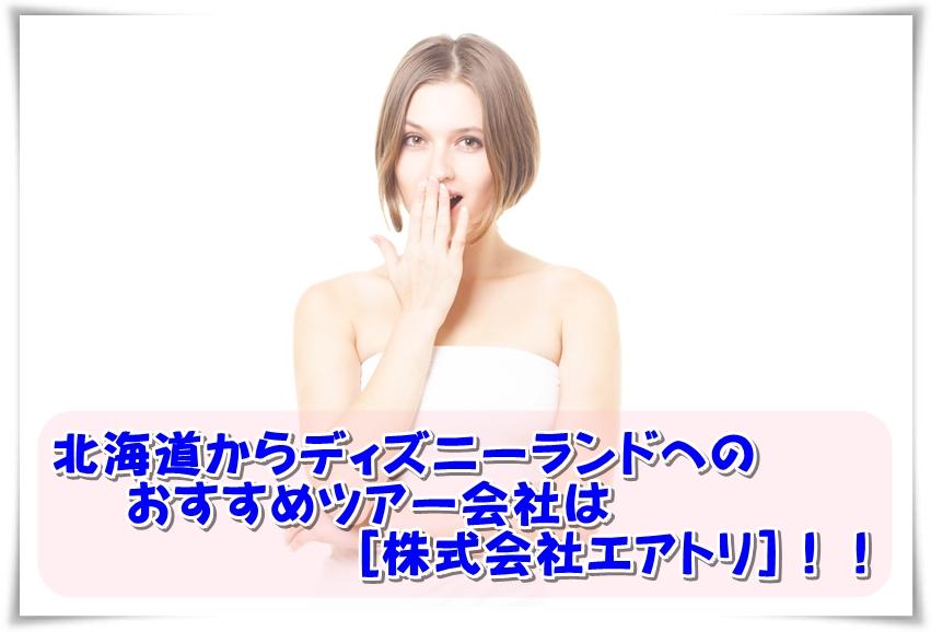 北海道からディズニーランドへのおすすめツアー会社は[株式会社エアトリ]!!