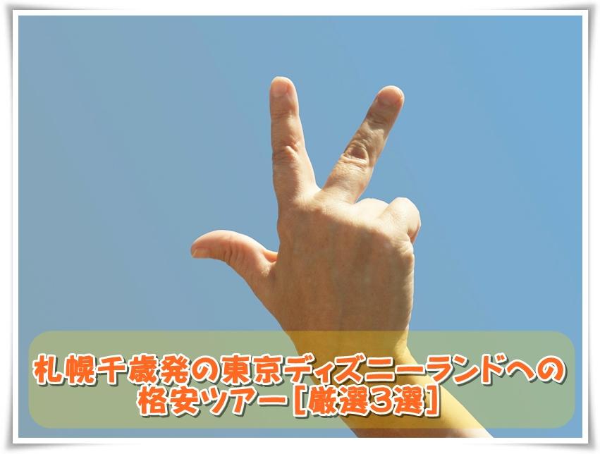 札幌千歳発の東京ディズニーランドへの格安ツアー[厳選3選] 画像