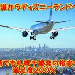 北海道からディズニーランドへ!安い時期でも札幌千歳発の格安ツアーで満足度200%