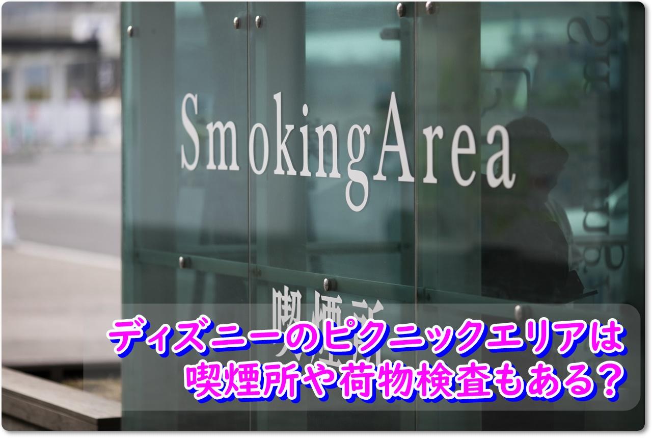 ディズニーのピクニックエリアは喫煙所や荷物検査もある?